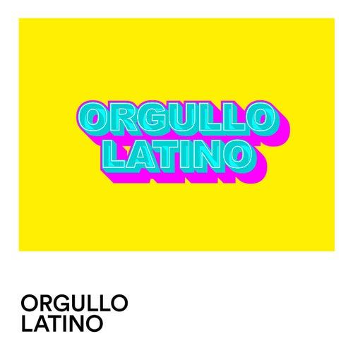 Orgullo Latino de Various Artists