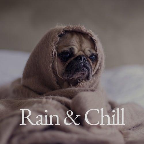Rain & Chill de Various Artists