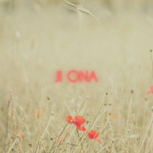 Poppies fra Ji Ona