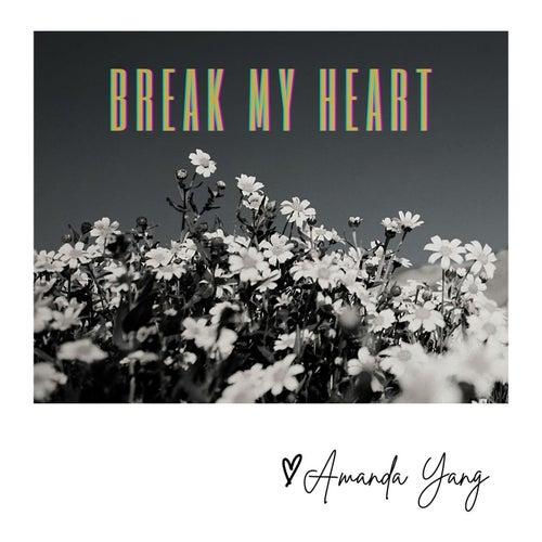 Break My Heart by Amanda Yang