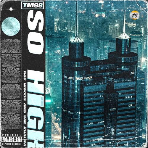 So High by TM88