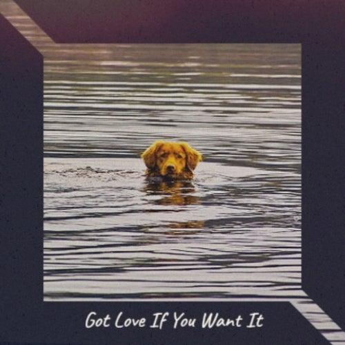 Got Love If You Want It de Wanda Jackson, Bobby Vee, The Everly Brothers, Bo Diddley, Ray Smith, Brenda Lee, Eddie Cochran, Warren Smith, Hank Thompson