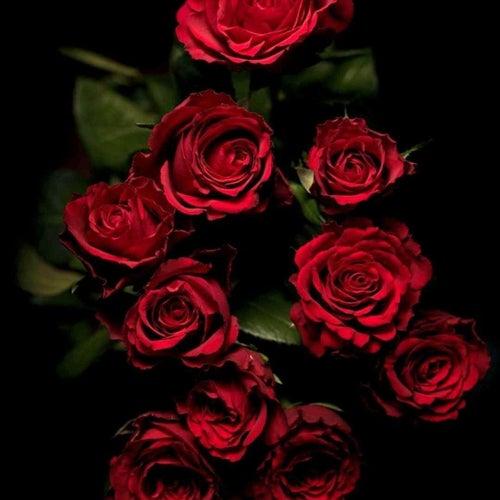 Roses fra Black Tilli