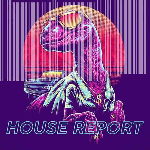House Report de Various Artists