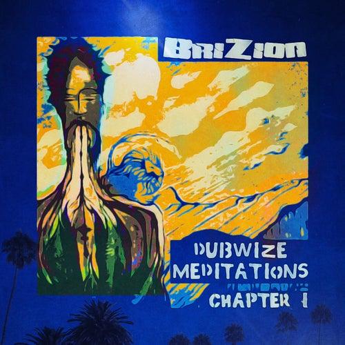 Dubwize Meditations Chapter 1 von Brizion