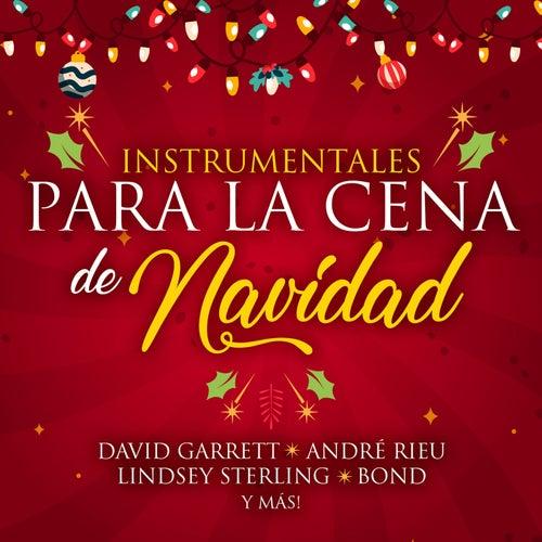 Instrumentales Para La Cena de Navidad von Various Artists