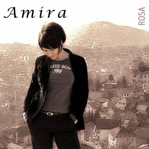 Rosa by Amira