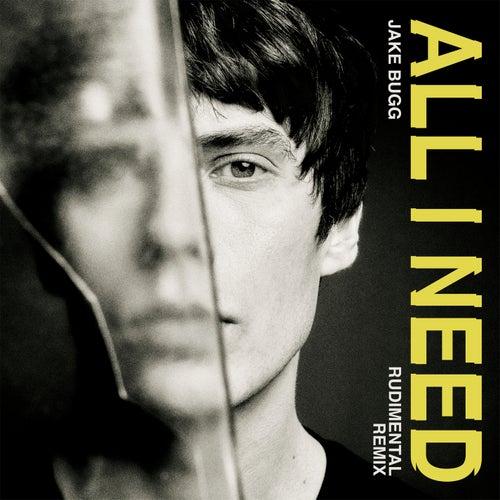 All I Need (Rudimental Remix) by Jake Bugg