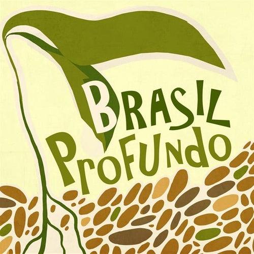 Brasil Profundo de Various Artists