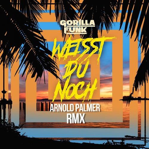 Weisst Du noch (Arnold Palmer Remix) by Gorilla Funk