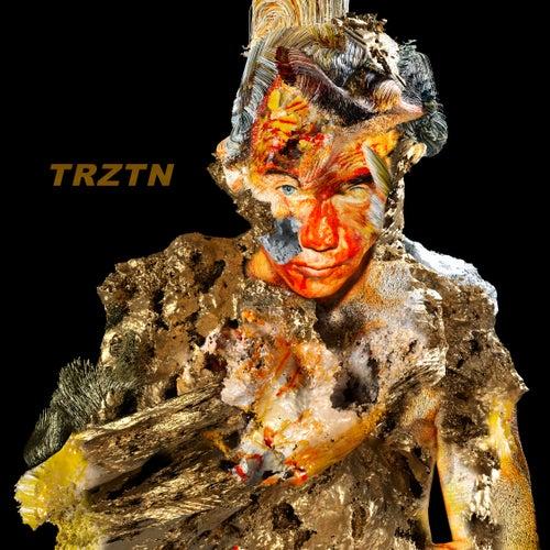 Metal Sky by Trztn