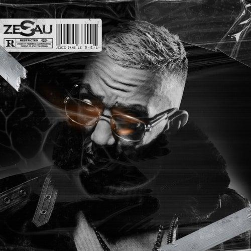 D.E.L de Zesau