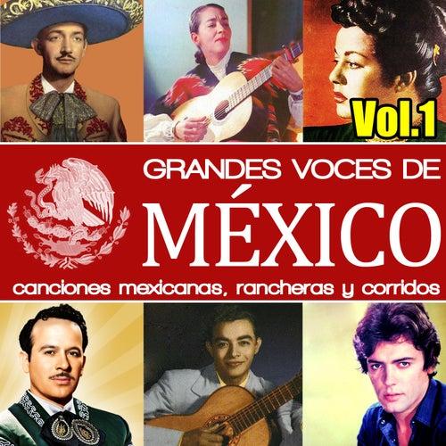 Grandes Voces de México. Canciones Mexicanas, Rancheras y Corridos. Vol.1 de Various Artists