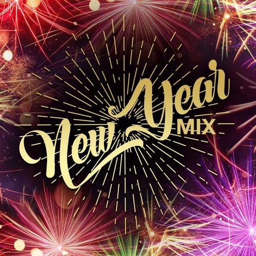 New Year Mix von Various Artists