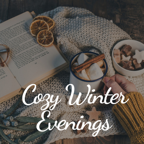 Cozy Winter Evenings di Various Artists