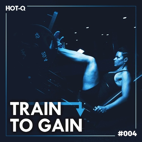 Train To Gain 004 by Various Artists