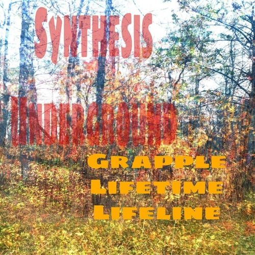 Grapple Lifetime Lifeline by Synthesis Underground