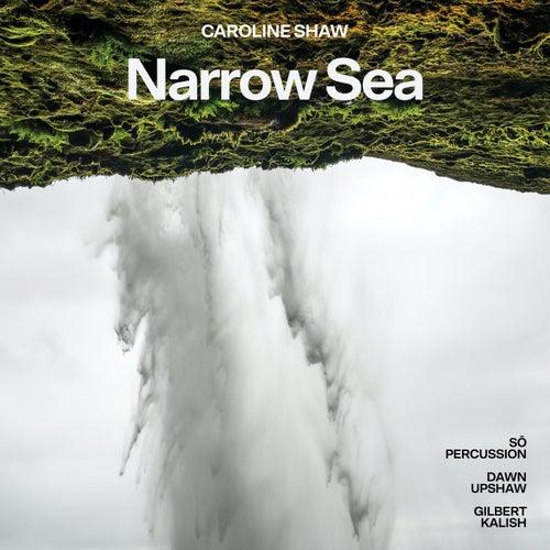 Narrow Sea, Pt. 2 by Dawn Upshaw