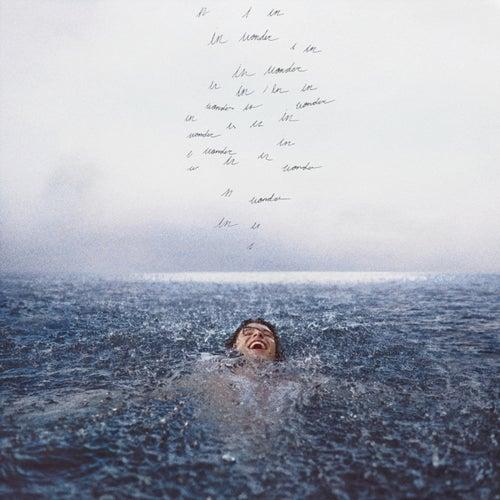 Wonder (Deluxe) fra Shawn Mendes