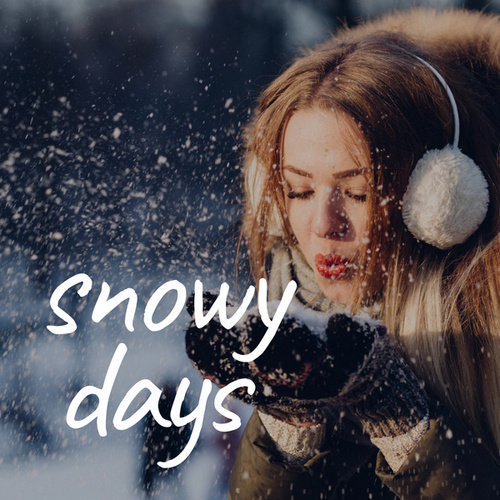 Snowy Days de Various Artists
