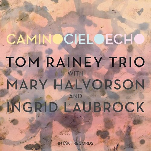 Camino Cielo Echo by Tom Rainey Trio