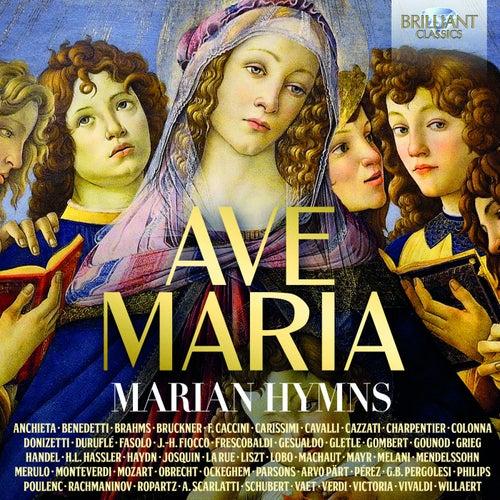 Ave Maria: Marian Hymns von Various Artists