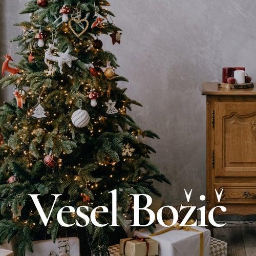 Vesel Božič de Various Artists