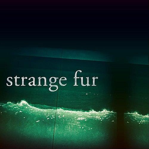 Rowhome by Strange Fur