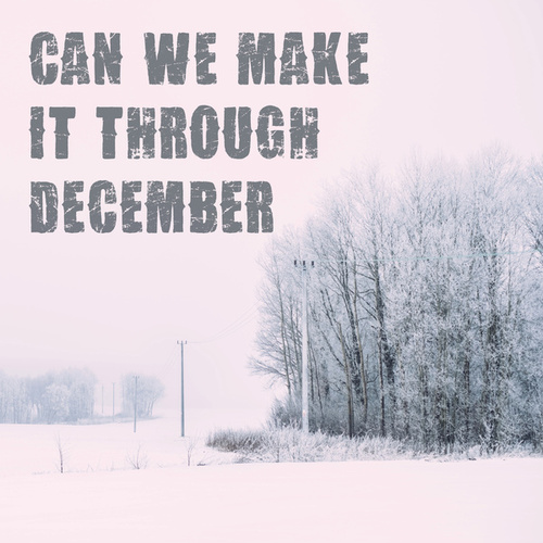 Can We Make It Through December by Various Artists