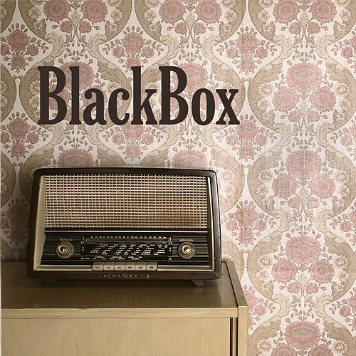 BlackBox van Black Box
