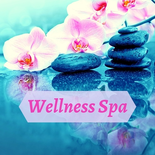 Wellness Spa - Music Formula, Defense for Immune System, Immunity Booster, Source Naturals von Zen Spa Music Relaxation Gamma