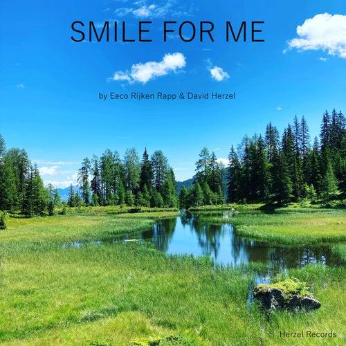 Smile for Me de David Herzel