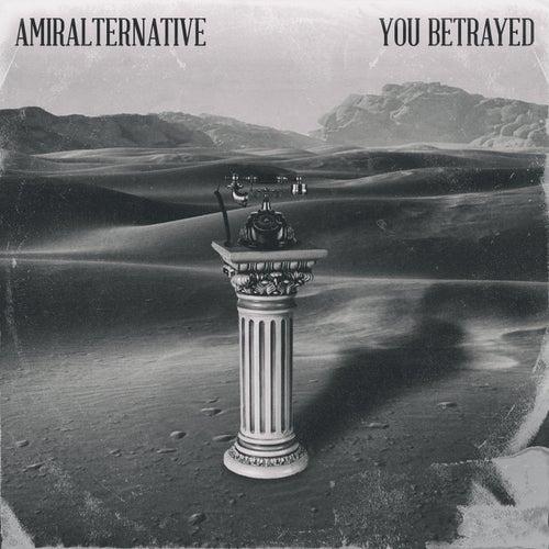 You Betrayed by Amira