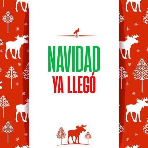 Navidad Ya Llegó by Various Artists