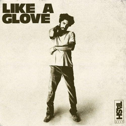Like a Glove by Tash Neal