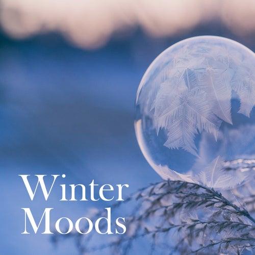 Winter Moods by Daniel Hope
