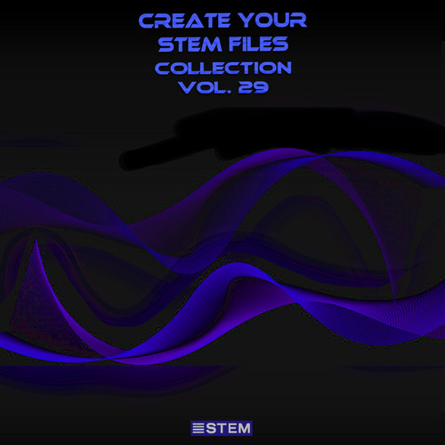 Create Your Stem Files Collection, Vol. 29 (Instrumental Versions And Tracks With Separate Sounds) by Express Groove