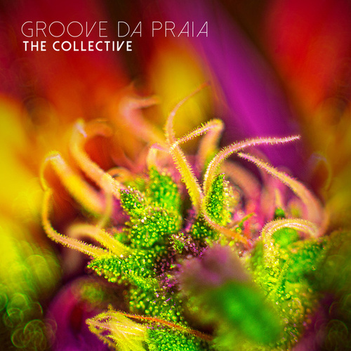 The Collective de Groove Da Praia