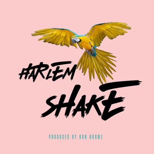 Harlem Shake by Ron Browz