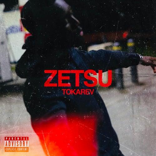 Tokarev by Zetsu
