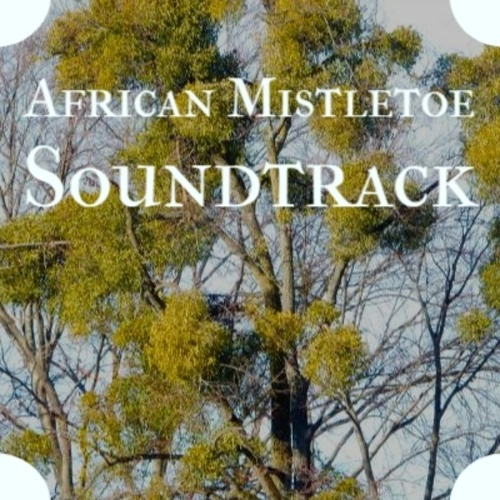 African Mistletoe Soundtrack by Eddie Cochran