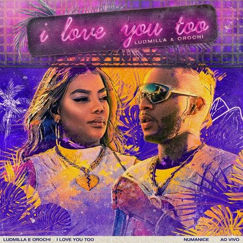 I Love You Too (Ao Vivo) by Ludmilla