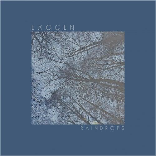 Raindrops (Single) by Exogen