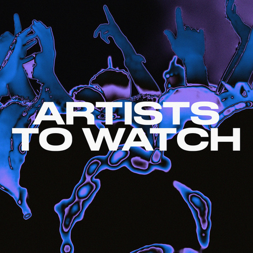 Artists to Watch de Various Artists