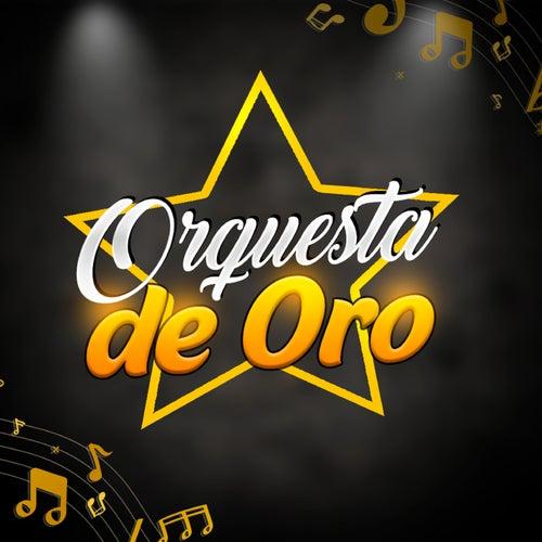 Nunca Voy a Olvidarte de Orquesta de Oro