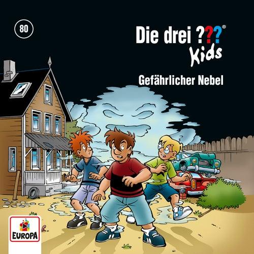 080/Gefährlicher Nebel von Die Drei ??? Kids