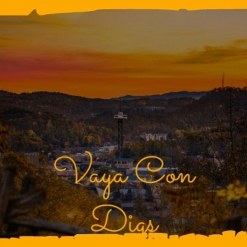Vaya Con Digs by Various Artists