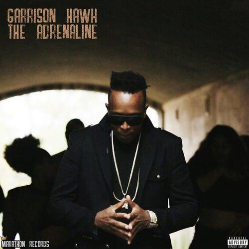 The Adrenaline by Garrison Hawk