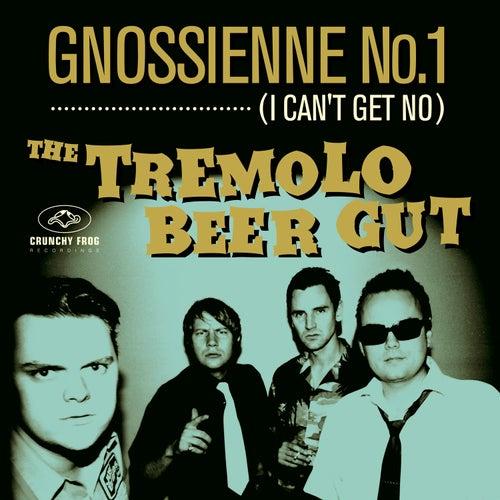 Gnossienne No. 1 (I Can't Get No) de The Tremolo Beer Gut