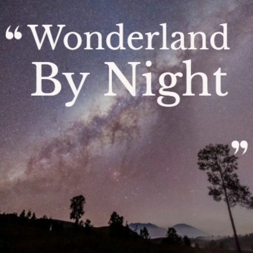 Wonderland By Night by Various Artists